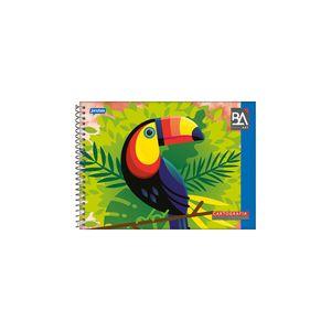 Caderno Cartografia Jandaia Espiral Capa Flexível 96 Folhas
